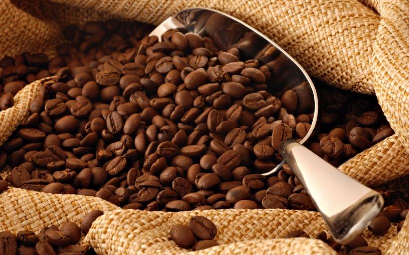 scoop-coffee-beans